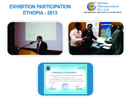 Orthopedic Conference 2013