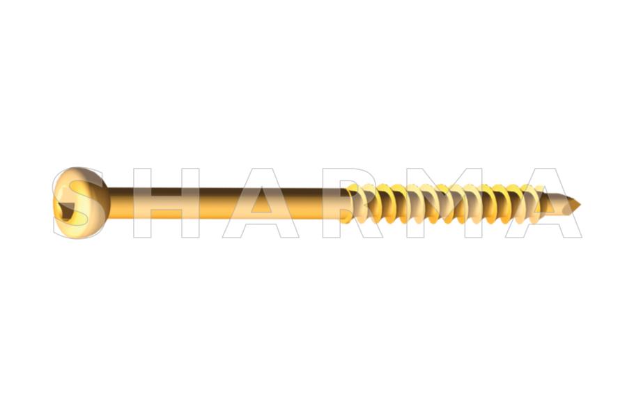 Malleolar Screw 4.5mm